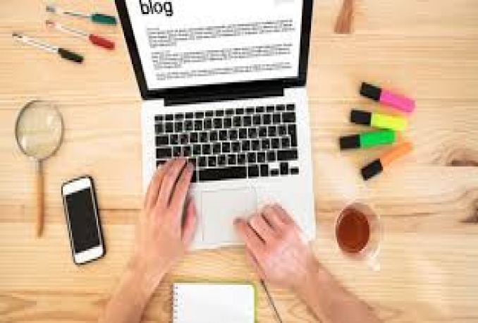 i will provide professional blog/ content / article writer