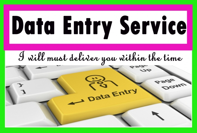 provide any type of data entry services on Ms word,Excel,oracle,quick books etc