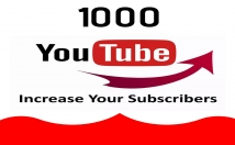 Provide You 1000 Youtube High Quality Lifetime Subscribers
