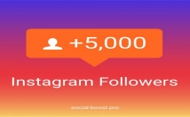 provide you 5000 Instagram followers