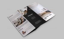I Will Design A Professional Logo Brochure, Flyer Or Leaflet