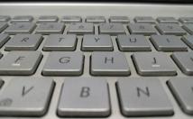 write professional blog, Article