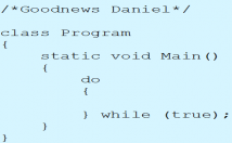 write your C, C++, C#, Java and Php Codes