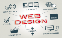 design website and develop for you